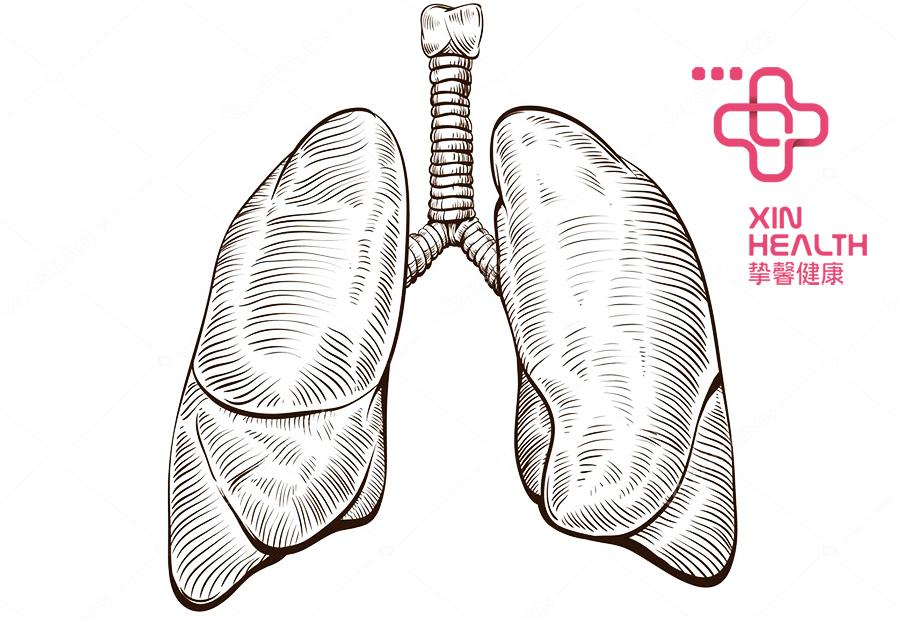 日本体检肺