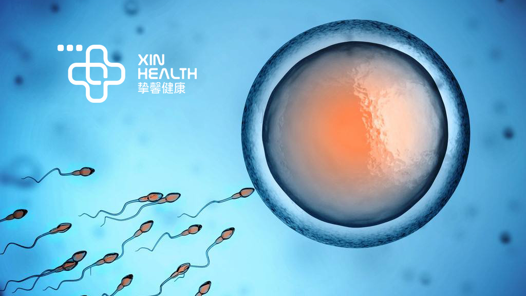 日本试管婴儿