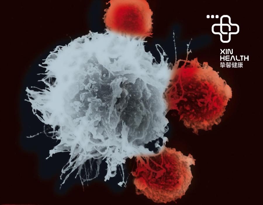 精密的癌细胞检测