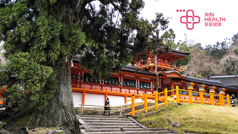 日本奈良风景