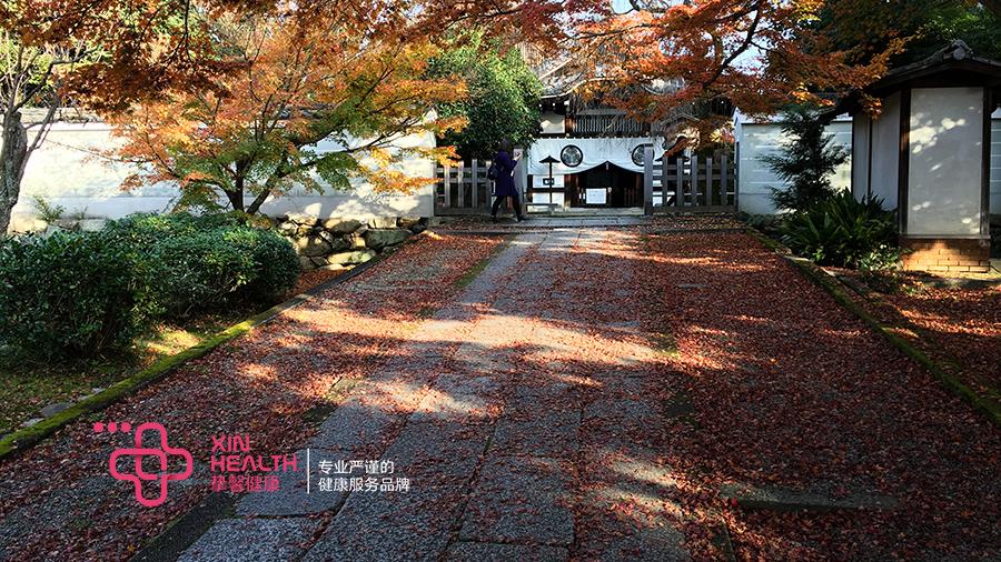 日本京都红叶季的寺院
