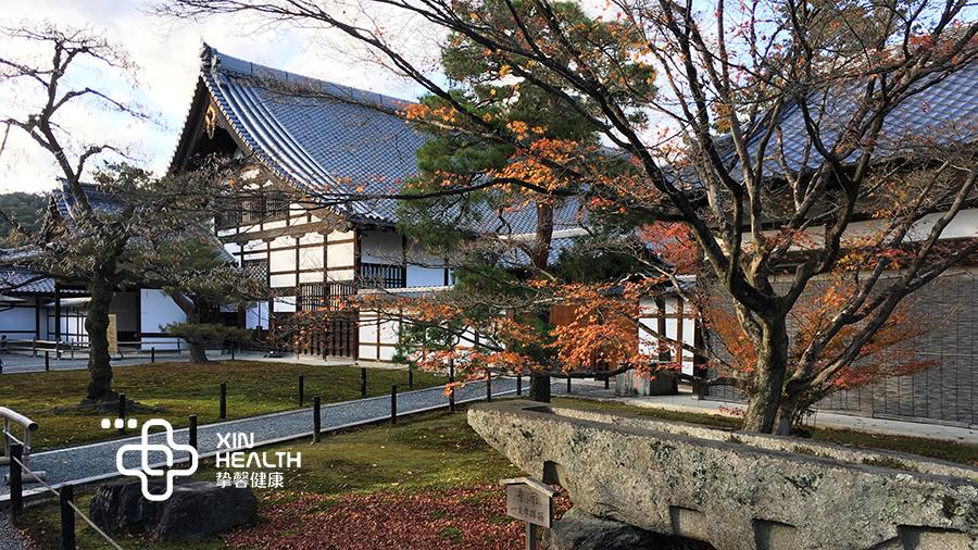 去日本旅游体检