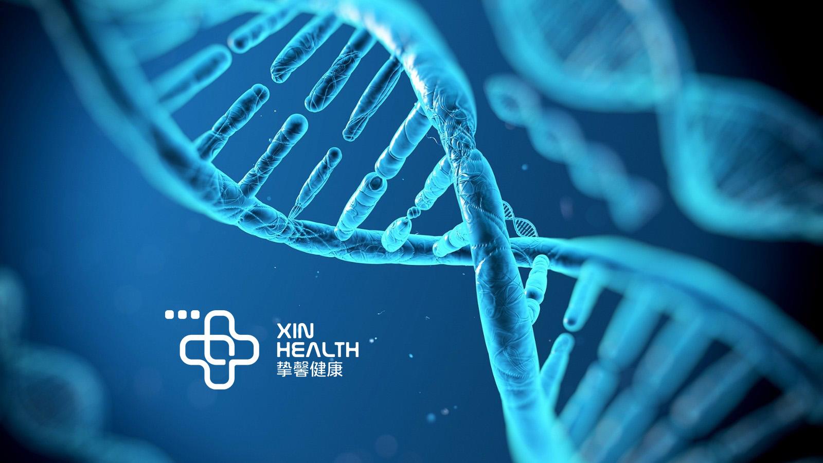 DNA遗传图