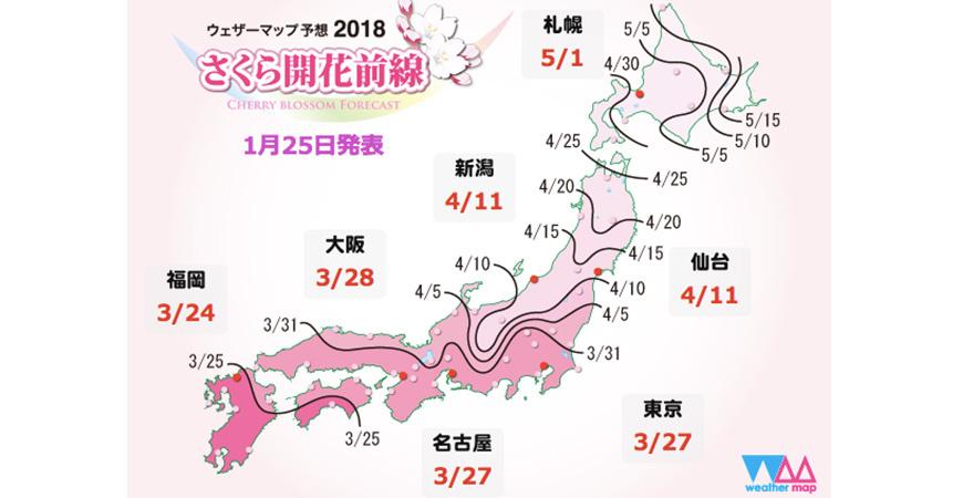 日本樱花花期攻略图