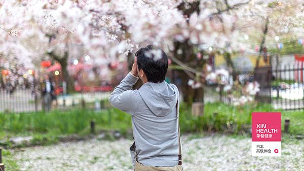 拍摄樱花是去日本旅游的一种享受