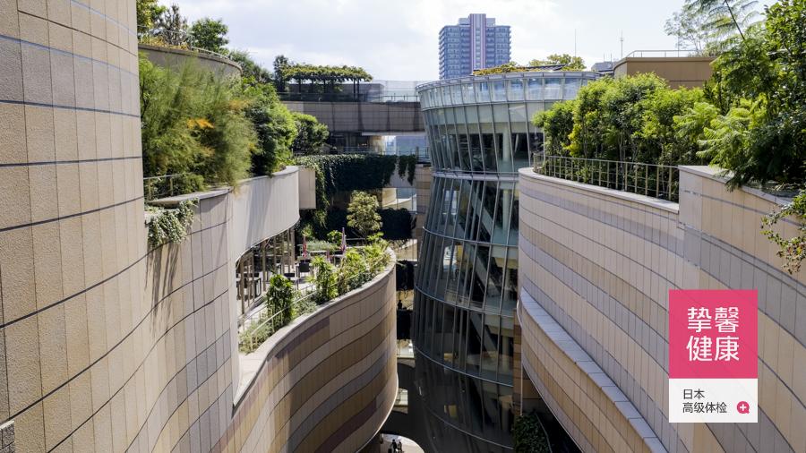 日本体检大楼外部景色