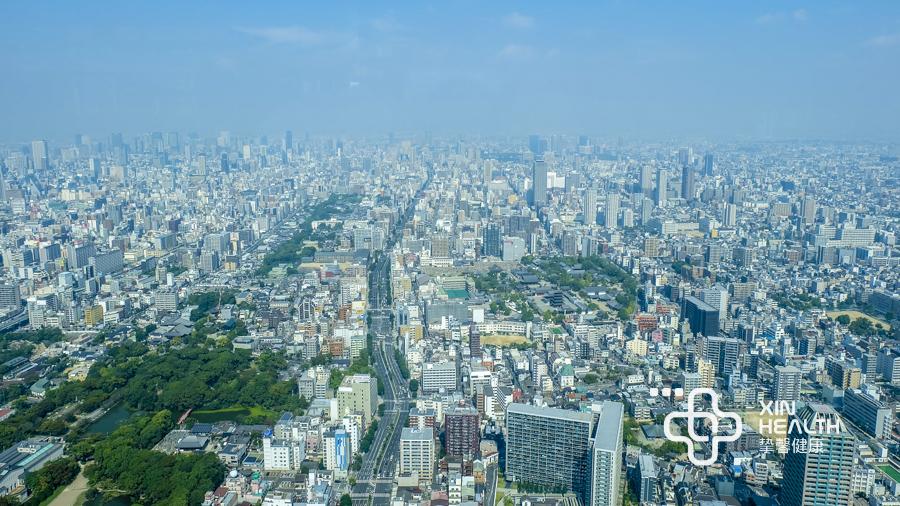 日本高级体检大楼俯瞰景色