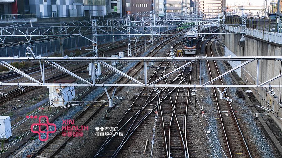 发达的日本轨道交通