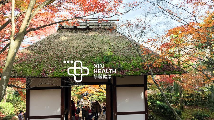 红叶季的日本别有一番风味