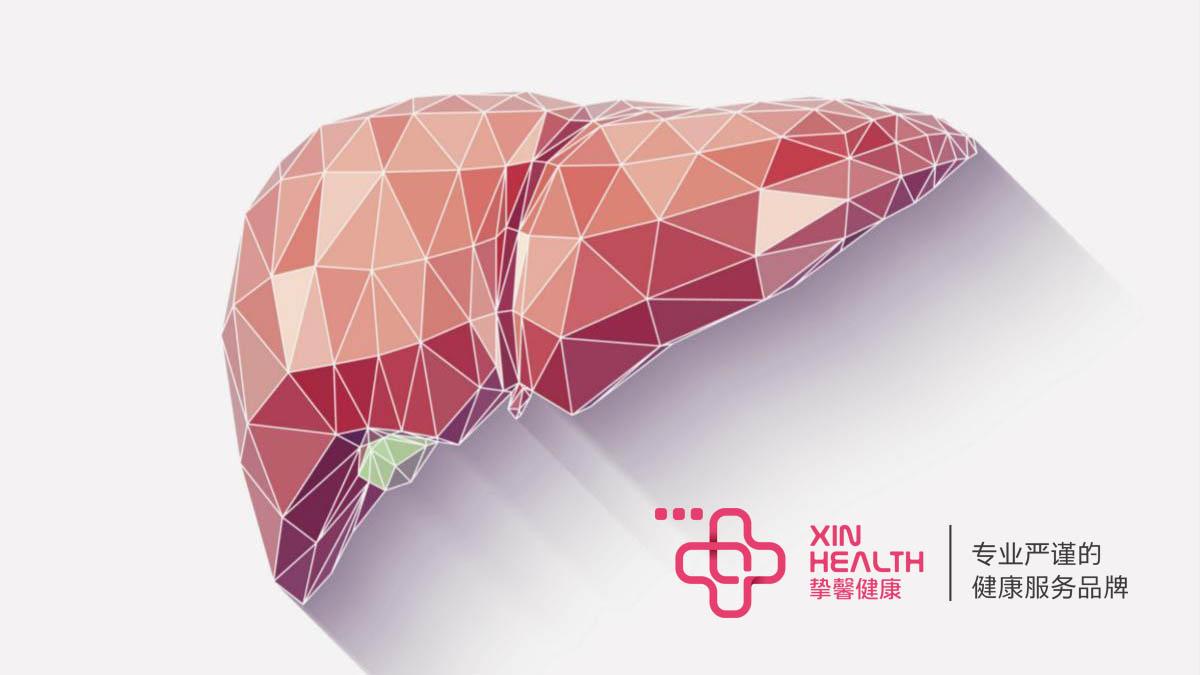 肝脏自我修复的过程中会逐渐纤维化