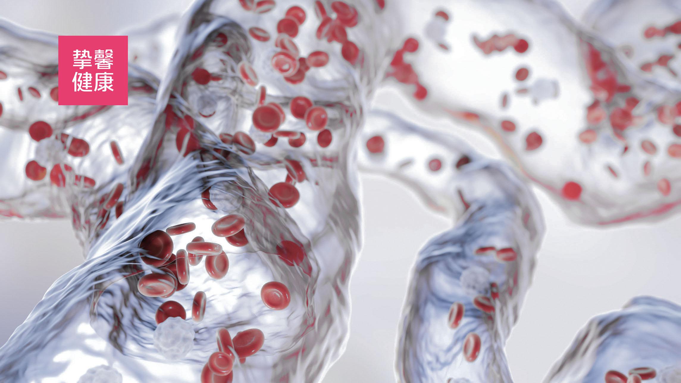 人体内血管是连通全身的