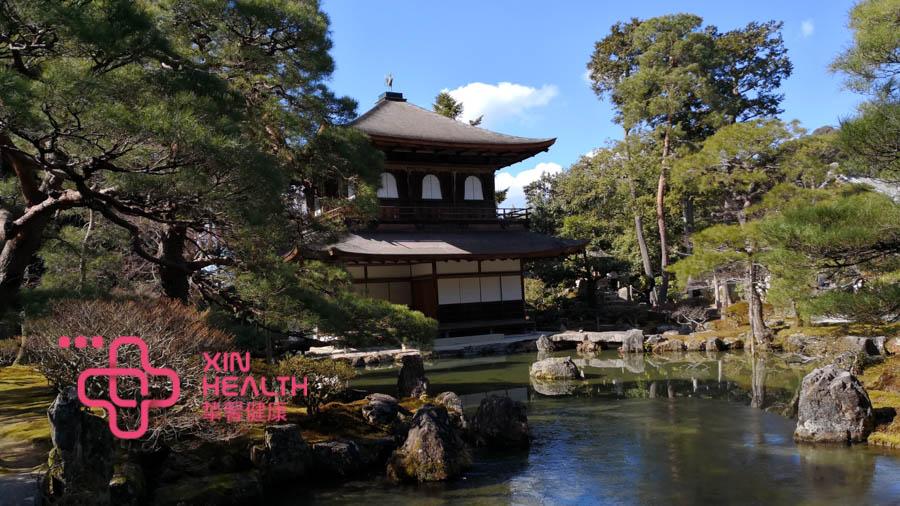 日本的风景优美,适合旅行