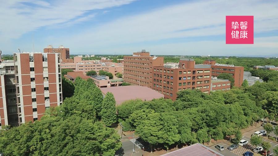 日本筑波大学校区全景