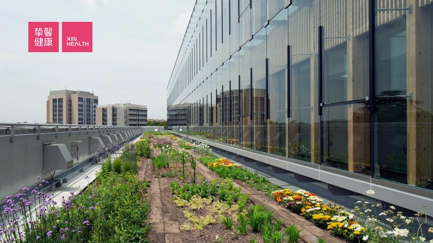 医院的屋顶花园