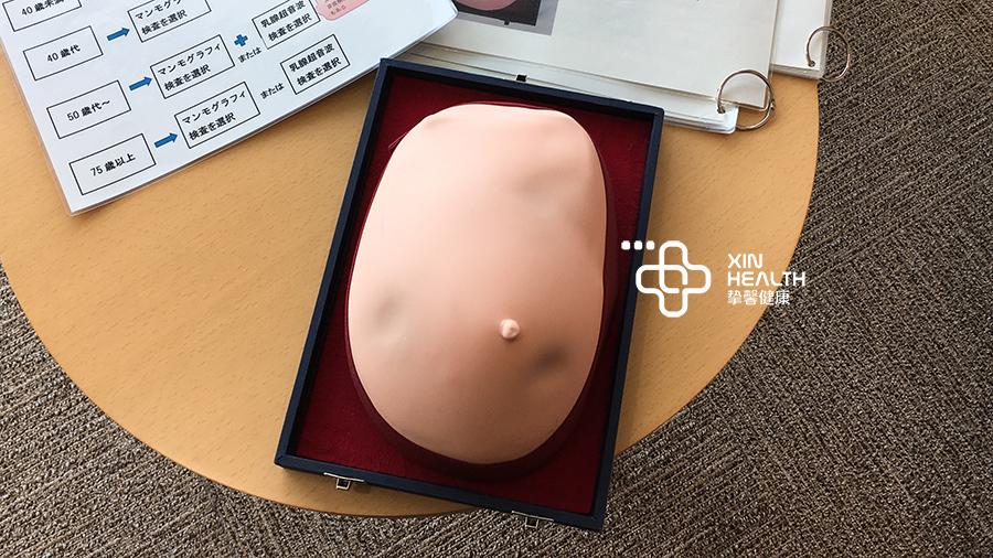 妇科检查乳房自检模型