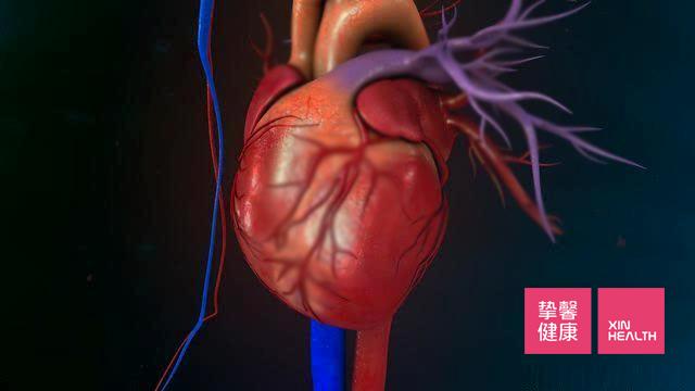 心脏是最主要的检查位置