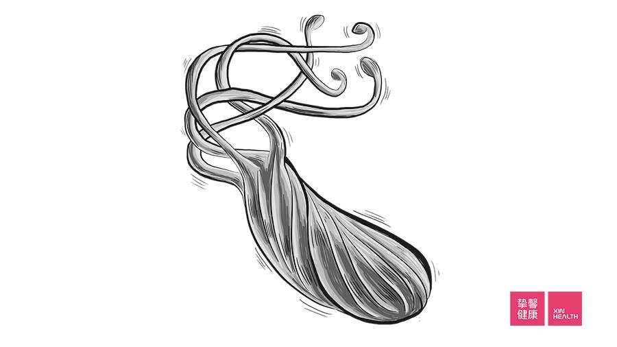 幽门螺杆菌感染可以引起胃炎、胃溃疡、胃癌