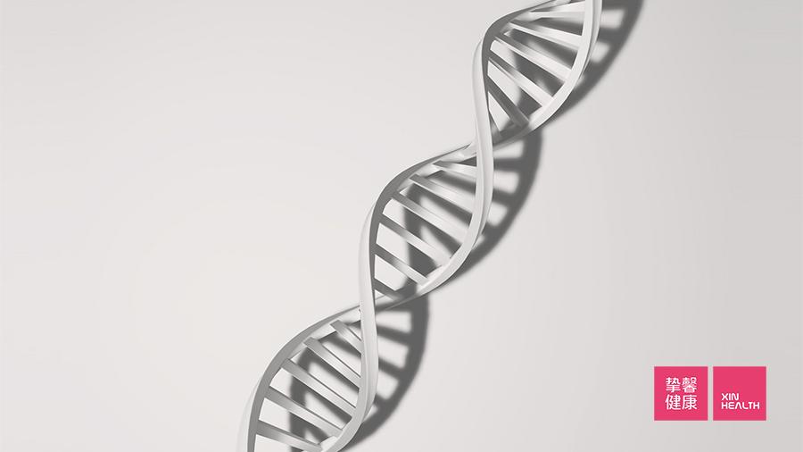染色体复制过程中发生随即错误引起癌症