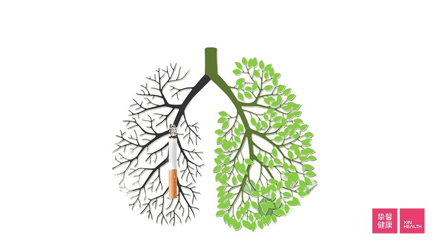 吸烟是肺癌的主要原因