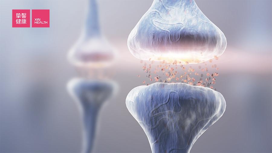 痛觉的产生有明确的神经传导通路