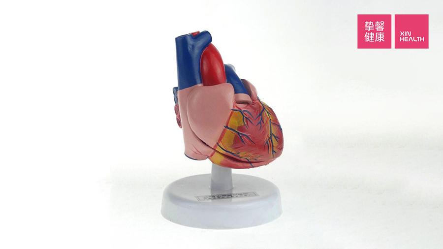 心脑血管疾病患者要时刻关注心脏健康