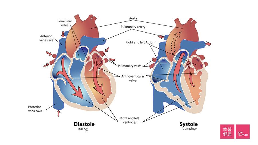心血管则设计了一个信息闭环的体系