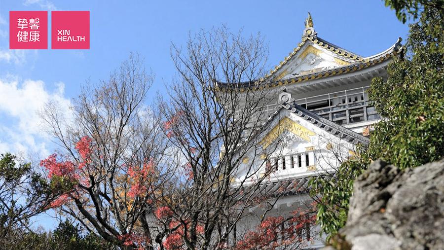 金华山顶的岐阜城