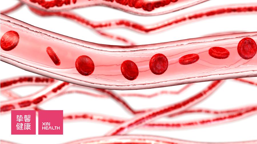 抑制血管内皮细胞,从而阻止肿瘤生成