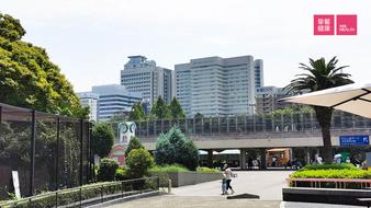 哪些人群可以给自己安排一次日本体检?