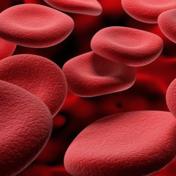 平均红血球容积 MCV