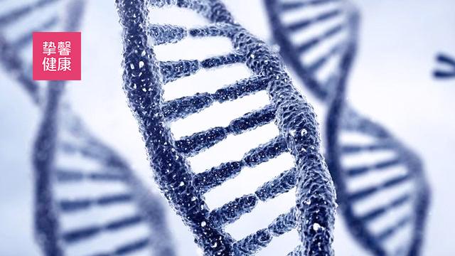 医学知识讲座 06:疾病其实为人类进化的结果(下)