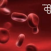 平均红血球血色素浓度 MCHC