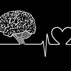 医学知识讲座 34:脑死亡意味生命的终结(上)