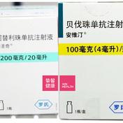 晚期肝癌治疗:免疫治疗药物阿替利珠单抗(泰圣奇)+ 抗血管生成的靶向药贝伐珠单抗(安维汀)简称T+A方案(上)