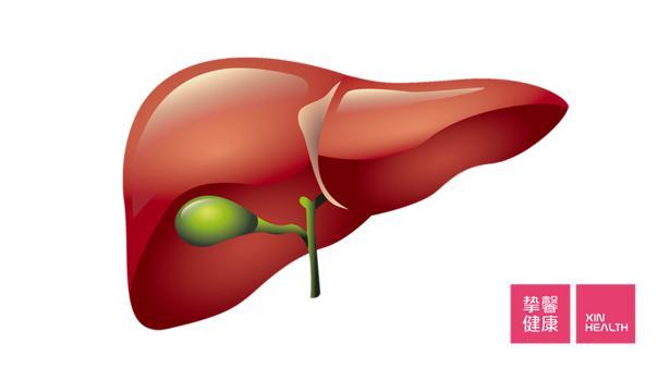 胆囊切除后还会有胆汁吗?