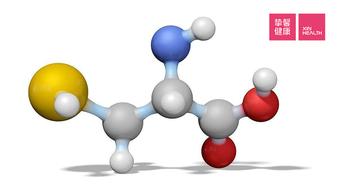 胰腺癌治疗:让胰腺癌缺乏半胱氨酸