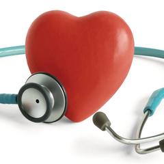 心脏病科普 01:心脏是心血管系统的领导者(上)