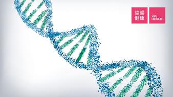 癌症治疗知识讲座 08:如何有效预防癌症?(上)